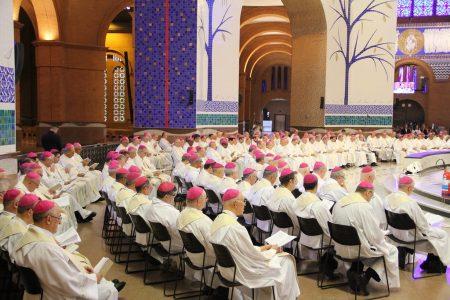 A Igreja no Brasil conclui 2019 com 489 bispos e nove dioceses vacantes