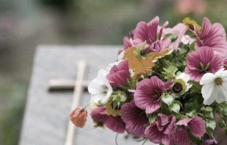 Missas de finados este ano acontecerão nas paróquias e a Arquidiocese de Palmas orienta fiéis a plantarem árvores neste dia