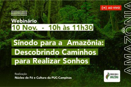 Arcebispo de Palmas participa de Webinário sobre o Sínodo para a Amazônia nesta terça-feira, 10
